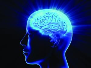 Cérebro Sinapse